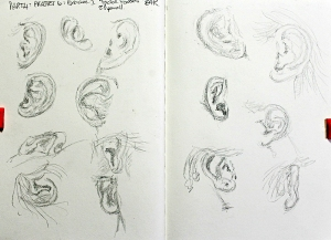 Part 4 Project 6 Exercise 1 - Facial features - ear