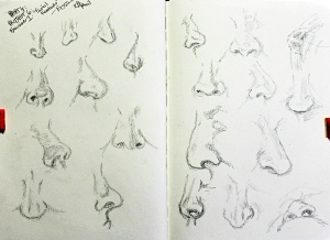 Part 4 Project 6 Exercise 1 - Facial features - nose